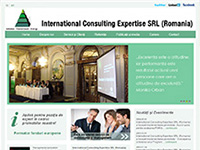 International Consulting Expertise